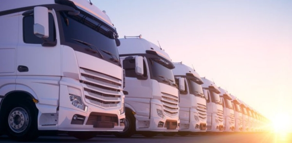 Advanced Fleet Management Consulting