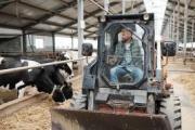 Nuevas medidas para el transporte de animales vivos durante el estado de alarma por coronavirus
