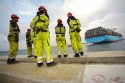 El Gobierno abre la puerta a la competencia en la estiba de los puertos
