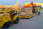 El aeropuerto de Foronda registra un crecimiento de más del 25% en su tráfico de mercancías