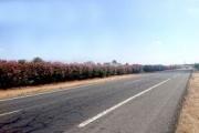 Empeora el estado de las carreteras españolas, según la AEC